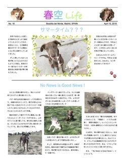 HSLife18-1.jpg