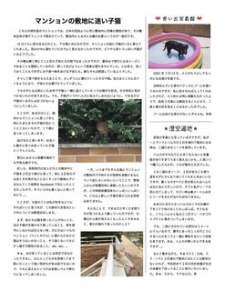 HSWeekly6-2.jpg